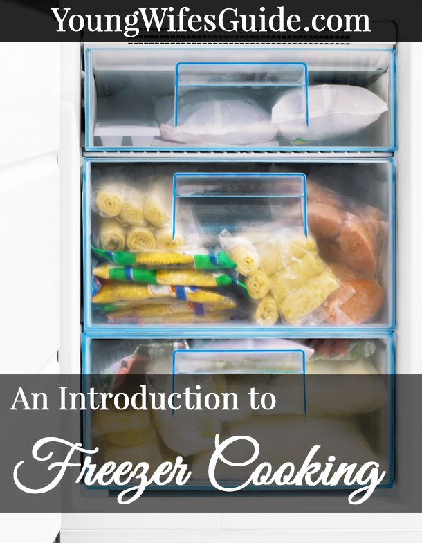 An introduction to freezer cooking