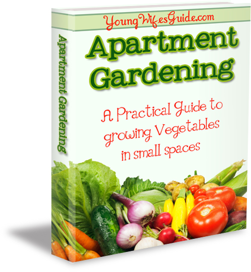 http://youngwifesguide.com/wp-content/uploads/2012/04/Garden-Ebook-sm-words-copy1.jpg