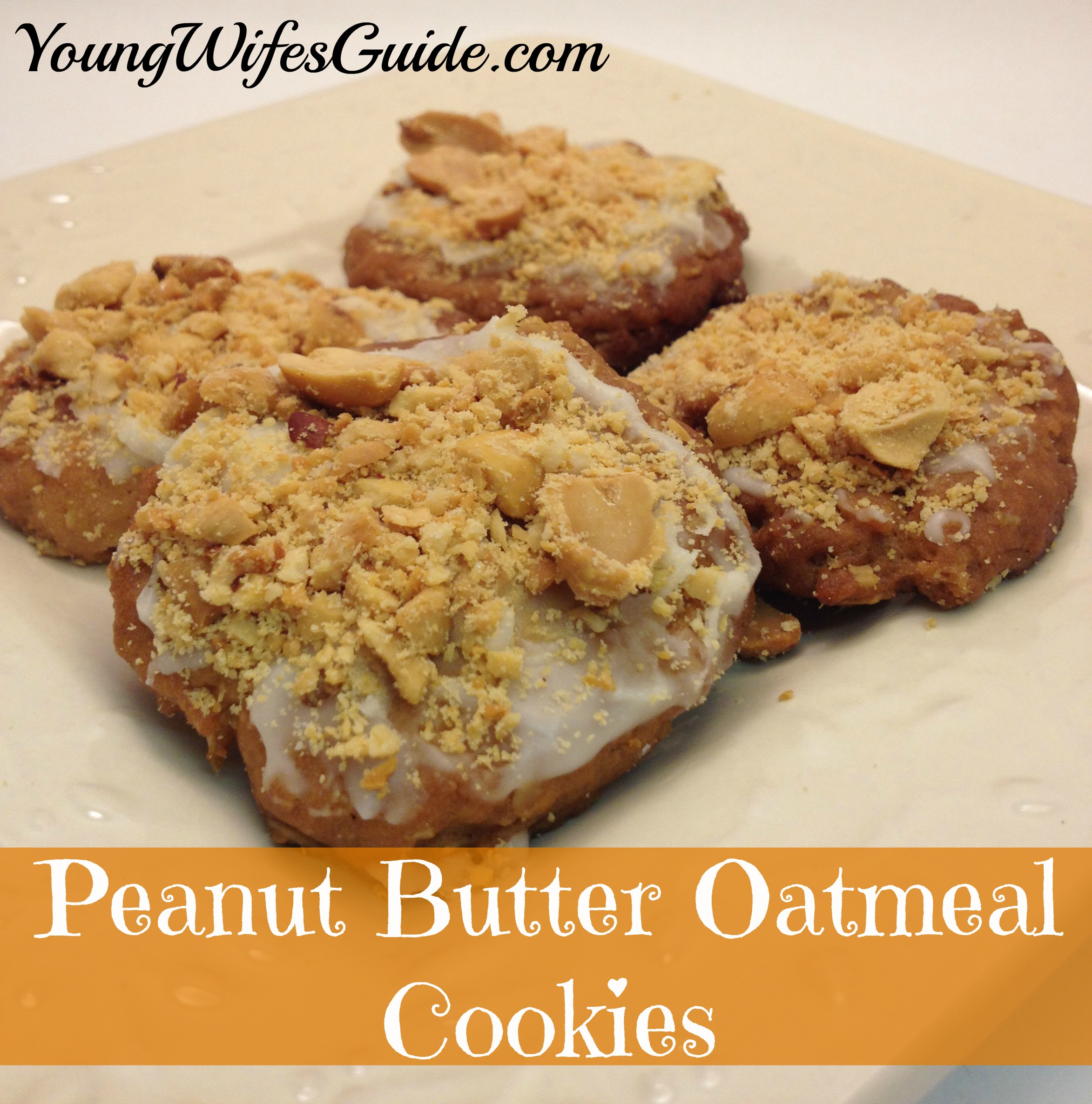 Peanut Butter Oatmeal Cookies | Lots of great Fall recipes! - Young ...