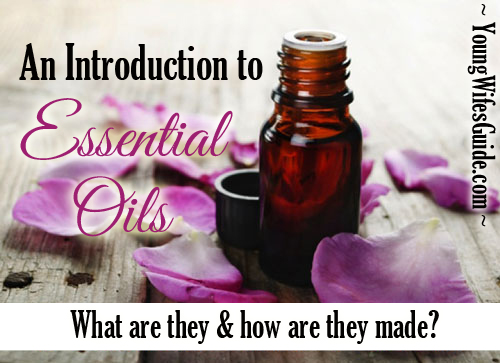 An introduction to essential oils - what are they and how are they made?