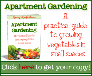 Apartment Gardening eBook - grow vegetables in small spaces