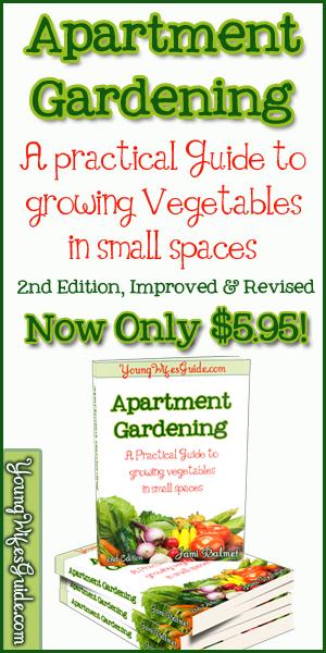 Apartment Gardening Horizontal