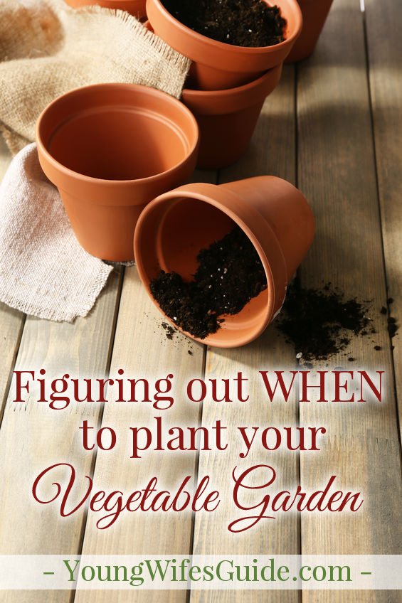 The next step in planting a vegetable garden, is know WHEN to get started! Dive into this mini guide as we walk you through step-by-step!