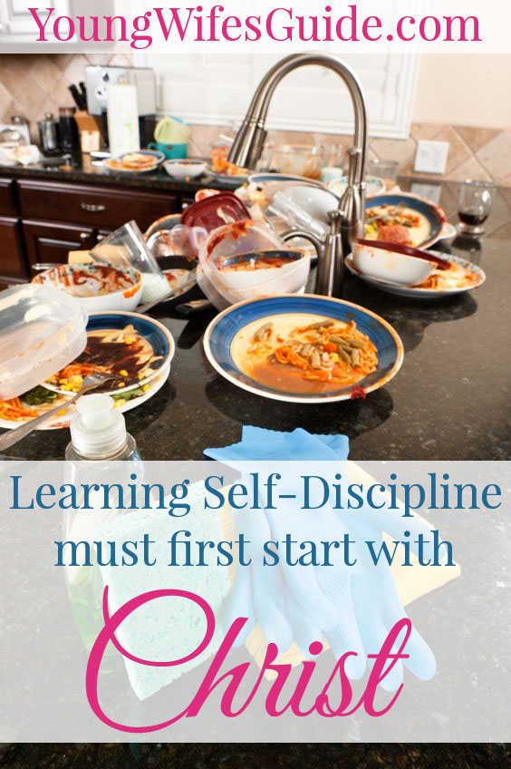 Discipline is perhaps my greatest struggle when it comes to being an efficient homemaker and Christ-follower. I deeply lack self-discipline and it comes back to bite me again and again. The largest lesson I've had to learn in my life, is how to be self-disciplined so I can effectively and efficiently run my household.