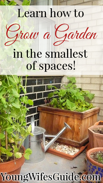 Learn how to grow a garden in the smallest of spaces!
