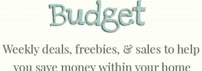 Homemaking on a Budget - Weekly Feature Every Friday 5.22.15