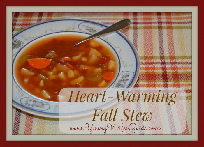 Heart Warming Fall Stew