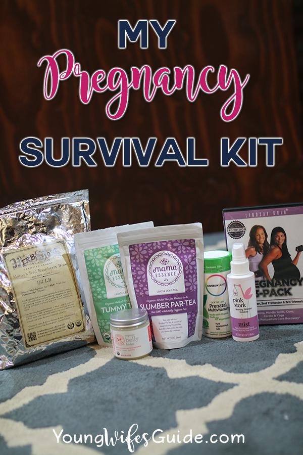my-pregnancy-survival-kit